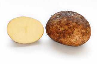 File:Potato and cross section.jpg