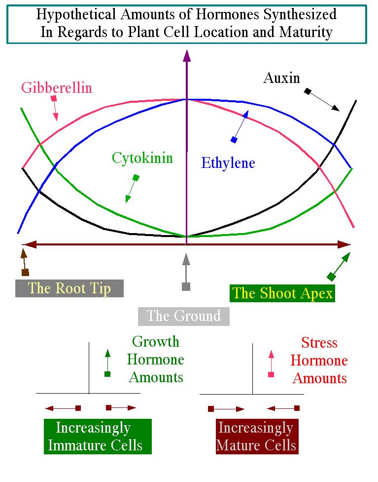 read модели надежности и функционирования
